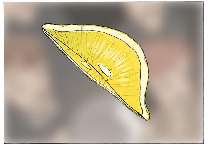 Fifa-Lemon-01
